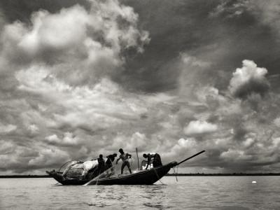 hilsa_one_fish